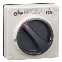 Surface Switch, 1 Gang, 2 Pole, 500VAC, 32A, Grey